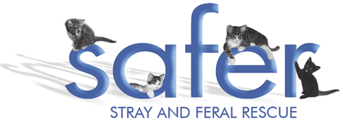 Safer - Stray and Feral Rescue